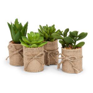Green Artificial Succulents