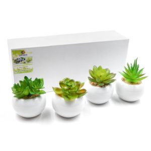 OFFIDIX Artificial Plants